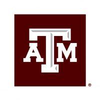 TAM-LogoBox